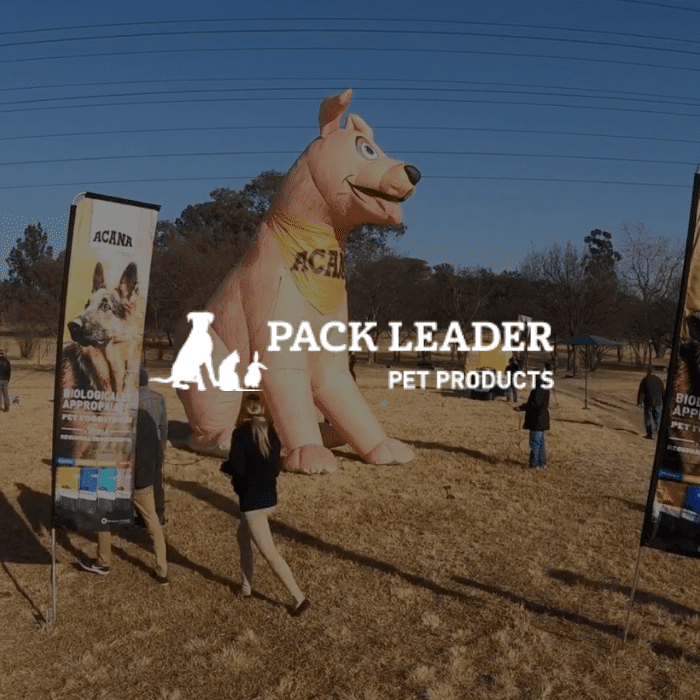 Pack Leader and Jawbone Brand Activation